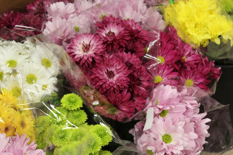 The Market at Poundridge - Kristina - Flowers